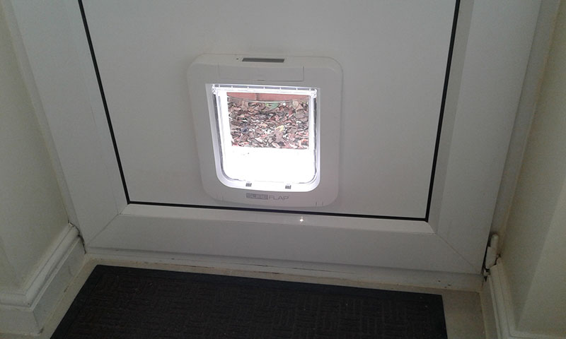 Internal view of a cat flap installed on the Wirral.